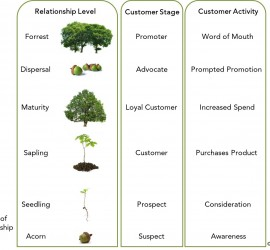 Mark Conway, Think Oak, Customer Relationships